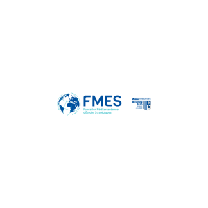 logo FMES.png